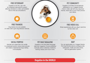 Dogalize Infographic