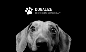 The first Dog Social network conquers the Silicon Valley