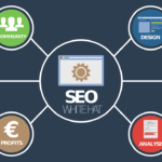 seo assessment
